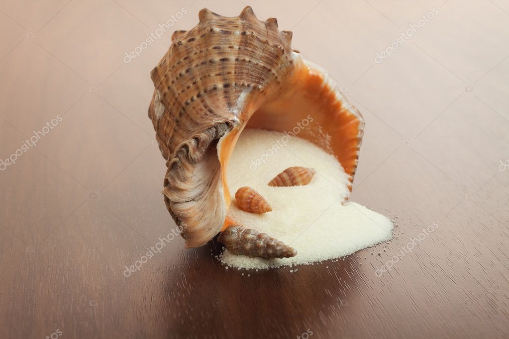 Bath salt and seashell on the wooden background — Stock Photo #5710996
