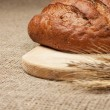 Stock Photo: Fresh loaf of bread with ears of rye on breadboard