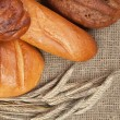 Variety of fresh bread with ears of rye — Stock Photo