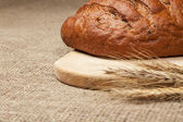 Fresh loaf of bread with ears of rye on the breadboard — Stock Photo