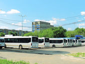 Bus fleet — Photo