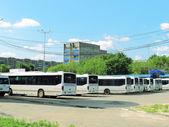 Flota de autobuses — Foto de Stock