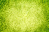 Green texture grass — Stock Photo