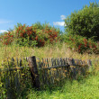 Shabby fence in the Russian Village - Stock Photo