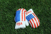 Boxing Gloves on the Grass — Stock Photo