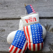 Stock Photo: Boxing Gloves and Tiny US Flag