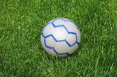 Soccer Ball on the Green Grass — Stock Photo