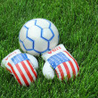 Boxing Gloves and Soccer Ball on Green Lawn - Stock Photo