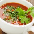 gazpacho — Stock Photo
