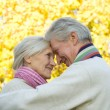 Nice elderly couple — Stock Photo #5441729