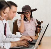 A young man and woman operatin laptops and a lady with a dog — Stock Photo