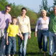 Stock Photo: Family of six on the nature