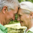 Happy elderly couple — Stock Photo #5511341