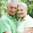 Happy elderly couple park — Stock Photo #5511355