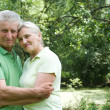 Happy elderly couple in park — Stock Photo #5511356