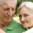 Happy elderly couple in park — Stock Photo #5511358