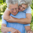Old couple in a park — Stock Photo #5514878