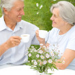 Nice elderly couple — Stock Photo #5514948
