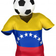 National Soccer Team of Venezuela . All Teams Collection . — Stock Photo