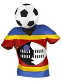 National Soccer Team of Swaziland . All Teams Collection . — Stock Photo