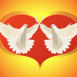 Two doves — Stock Photo