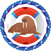 Walrus and lifeline — Stock Photo
