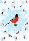 Winter bird — Stock Vector