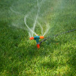 Sprinkler Spraying Water On Grass — Stock Photo