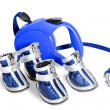 Stock Photo: Shoes and leash for dogs