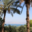 Seof Galilee — Stock Photo #5827056