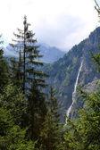 Alpine landschap — Stockfoto