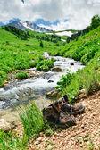 Botas de caminar frente a un arroyo de montaña — Foto de Stock