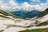 Snö och gräs — Stockfoto