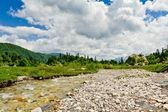Rivier in bergen — Stockfoto