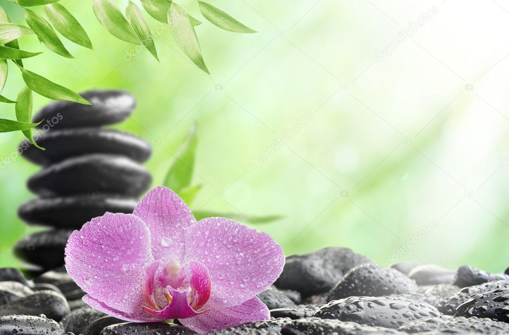 Spa concept with zen stones and  orchid — Lizenzfreies Foto #5858100