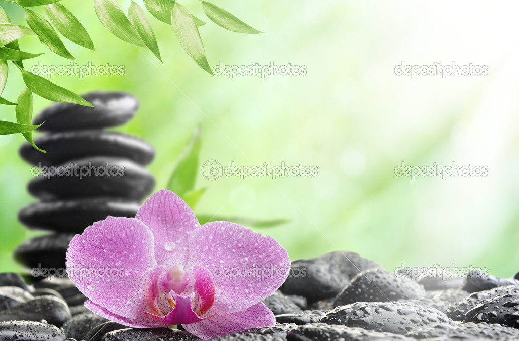 Spa concept with zen stones and  orchid  Foto de Stock   #5858100