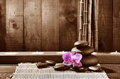 Conceito de spa — Foto Stock