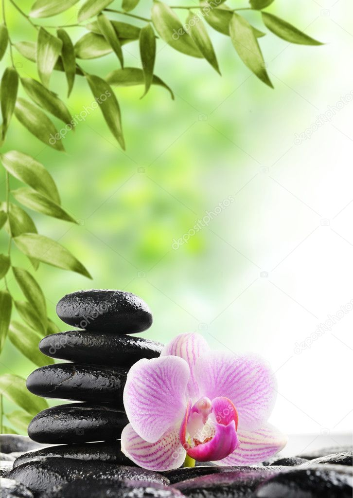 Spa concept with zen stones and flower — Stock Photo #6642828