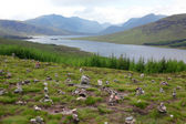 North part of Scotland end of Loch Shiel, GB — Stock Photo
