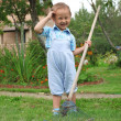 Royalty-Free Stock Photo: Little boy raking in the garden