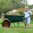 Young baby boy pushing a wheelbarrow in garden — Stock Photo