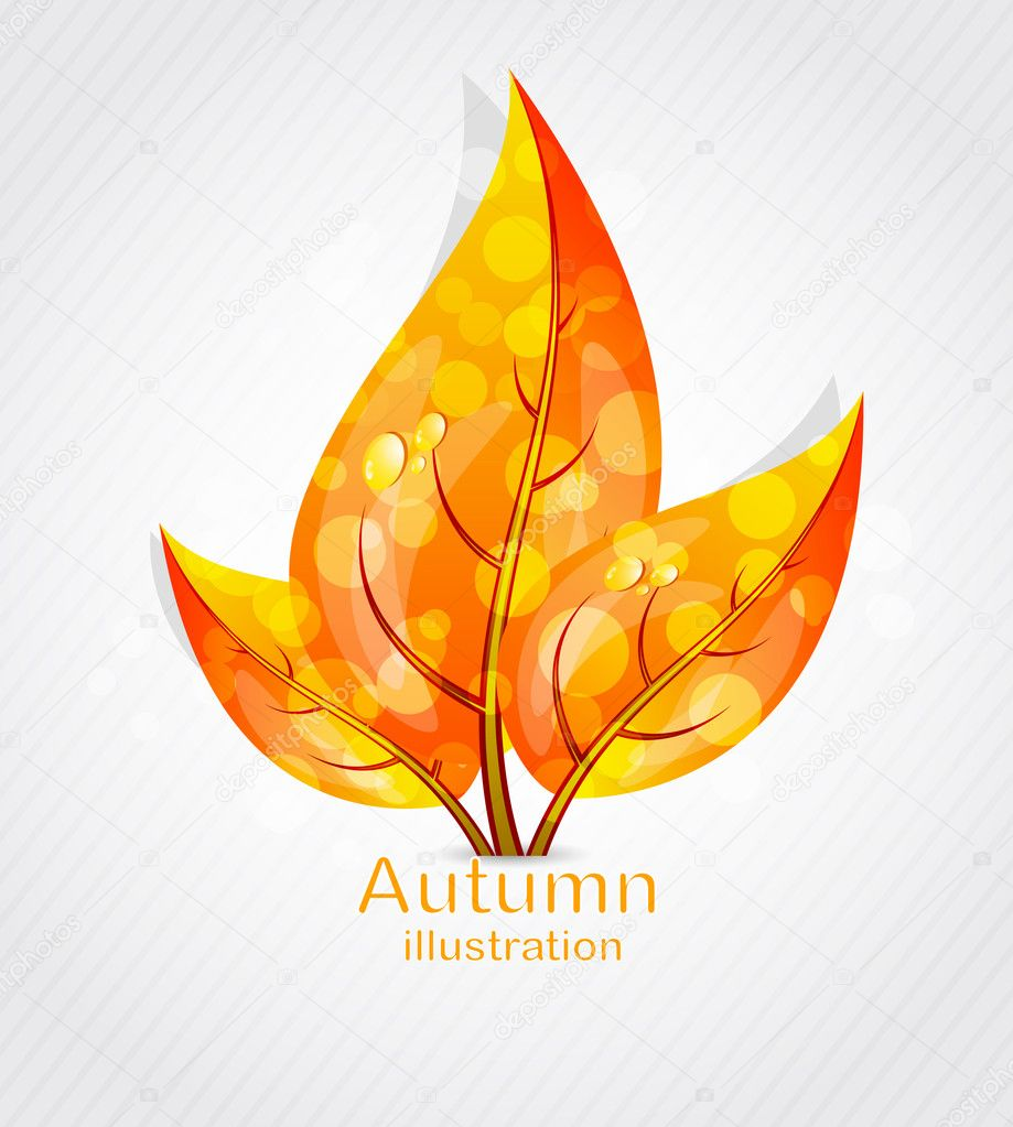 Autumn leaves design  Stock Vector #6723013