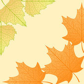 Vector autumn background. — Stock Vector