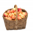 Crop of apples. — Stock Photo