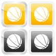 Square icon basketball — Stock Vector