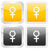 Square icon woman symbol — Stock Vector