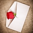 Stock Photo: Red Rose and Letter