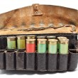 Vintage Ammunition Belt — Stock Photo #5745191