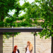 Two Girls at Bus Stop — Stock Photo #6381315