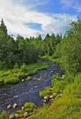 Grov floden — Stockfoto